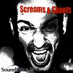 Scream & Shouts